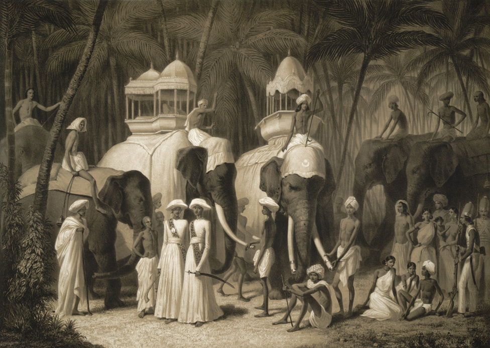 Éléphants du Radja de Travancor, Trivandrum. Mai 1841